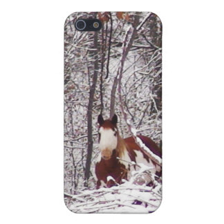 Horse In Winter Case iPhone 5 Cover