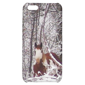 Horse In Winter Case iPhone 5C Cover