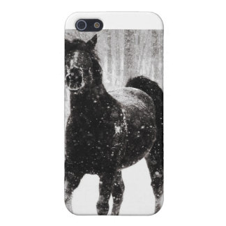 Horse in Winter iPhone 5/5S Cover