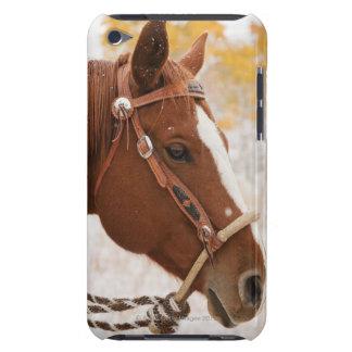 Horse iPod Case-Mate Case