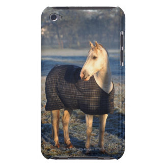 horse iPod touch cover