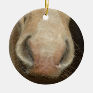 Horse Kiss Christmas Ornament