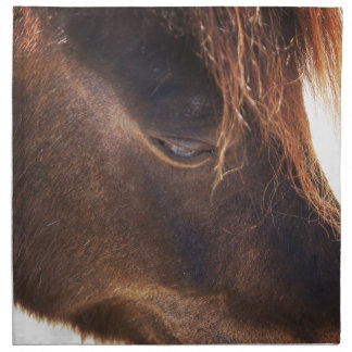 Horse looking down napkin