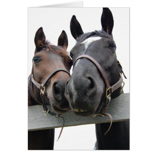 Horse-Love-1 Card