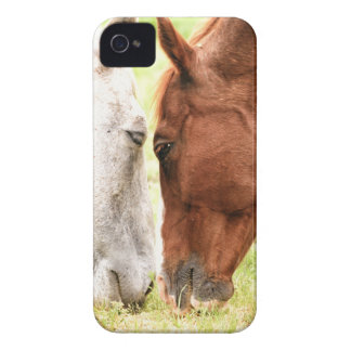 Horse Love iPhone 4 Case