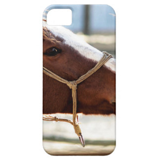 Horse Love iPhone 5 Cover
