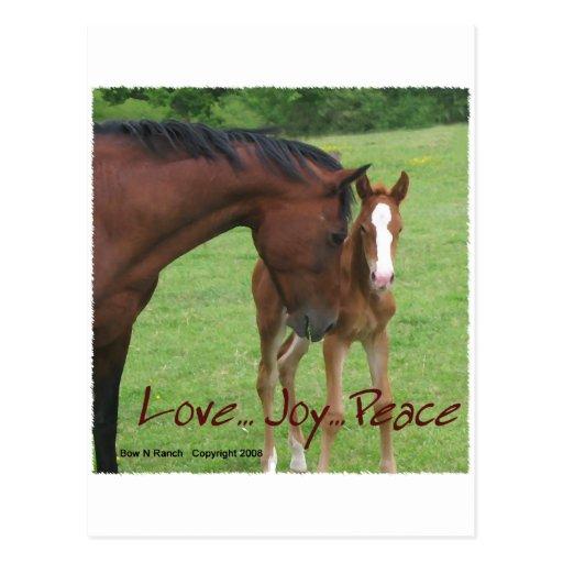 Horse Love, Joy,Peace Post Card