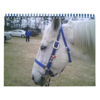 Horse Lover's Calendar