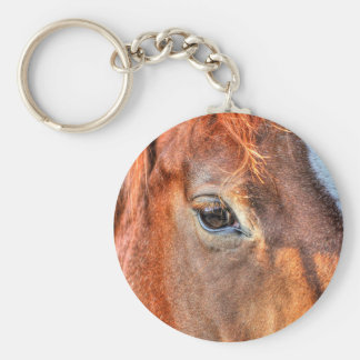 Horse-lover's Equine Photo on a BC Ranch Keychains