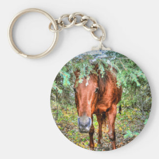 Horse-lover's Equine Photo on a BC Ranch Key Chain