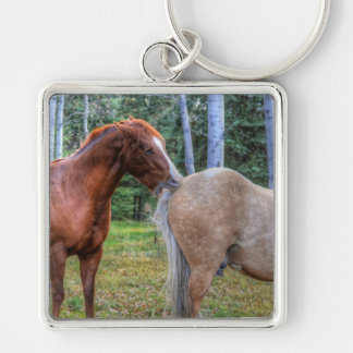 Horse-lover's Equine Photo on a BC Ranch Key Chains