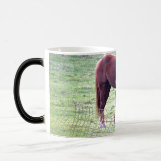 Horse Lovers Morphing Mug