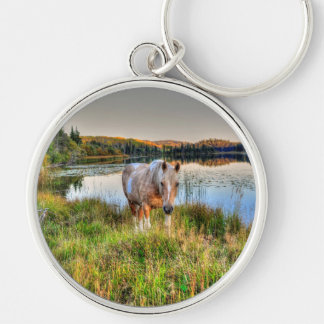 Horse-lover's Palomino Pinto Stallion Equine Photo Keychains