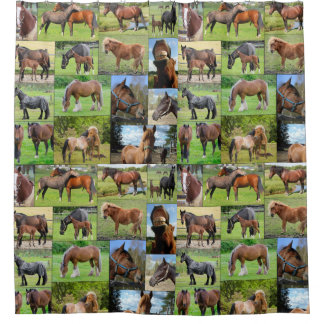 Horse Lover's shower curtain