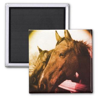 Horse Magnet - Orange