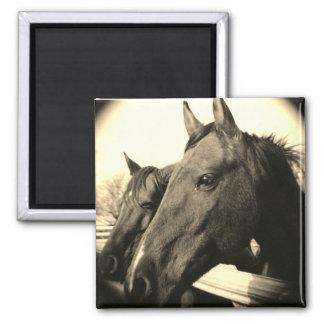 Horse Magnet - Sepia