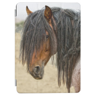 Horse Mane iPad Air Cover