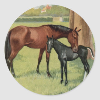 Horse Mare Foal Equestrian Vintage Image Classic Round Sticker