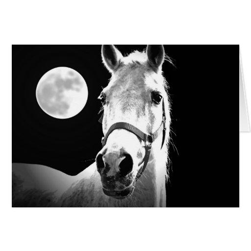 Horse & Moon Card