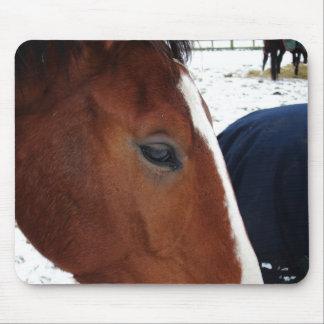 Horse mousemat