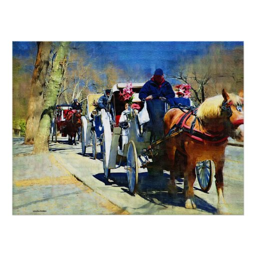 Horse n Carriage Ride Canvas Print