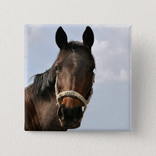 Horse of button