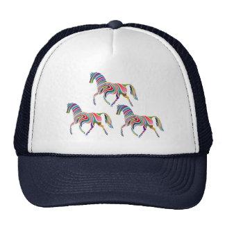 Horse of rainbow cap