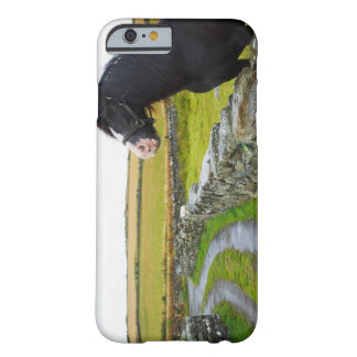 Horse on farm in rural England Barely There iPhone 6 Case