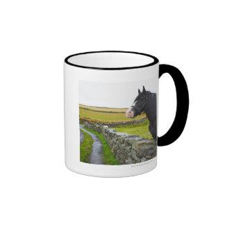 Horse on farm in rural England Coffee Mugs