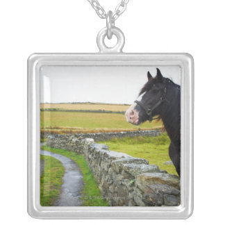 Horse on farm in rural England Silver Plated Necklace