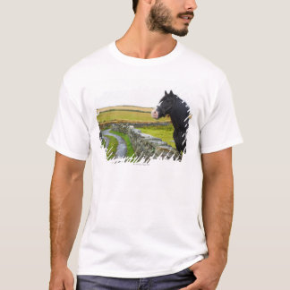 Horse on farm in rural England T-Shirt
