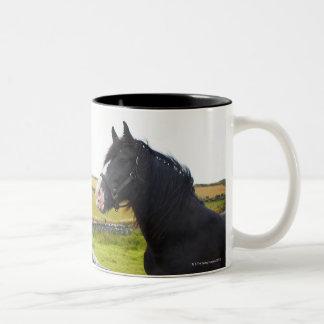 Horse on farm in rural England Two-Tone Coffee Mug