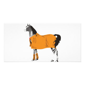 Horse on Holiday Picture Card