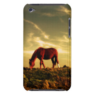 Horse on the Range iPod Case-Mate Cases