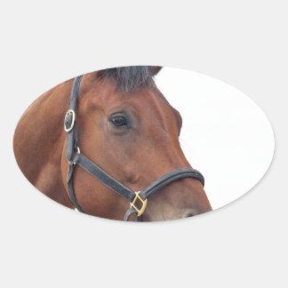 Horse Oval Sticker