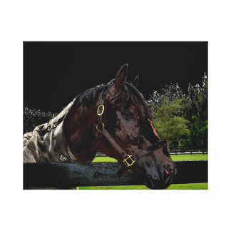 horse over fence side view dark colors gallery wrapped canvas