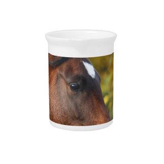 Horse Pitcher