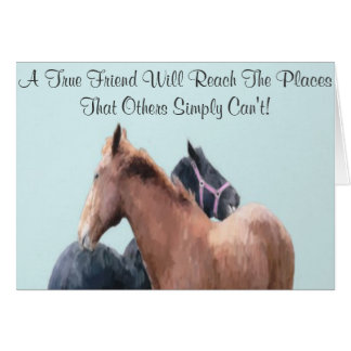 Horse Play Greeting Cards. Greeting Card