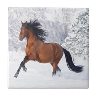 Horse Play In The Snow Tile
