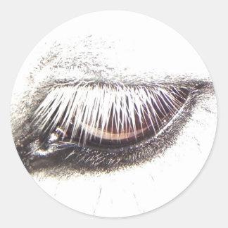 horse/pony eye sticker
