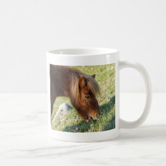 horse pony  in the farm mugs