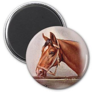 Horse Portrait 2 6 Cm Round Magnet