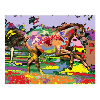 horse Portrait 3 Post Cards
