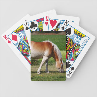 Horse portrait bicycle playing cards