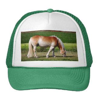 Horse portrait mesh hats