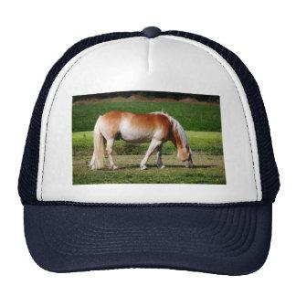Horse portrait mesh hat