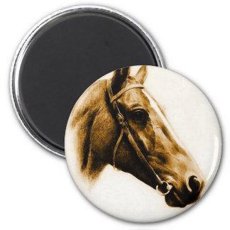 Horse Portrait Magnets