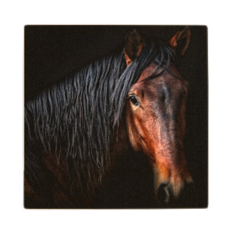 Horse Portrait VII Wood Coaster