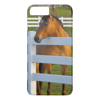 Horse poses by Flathead Cherry orchard near iPhone 8 Plus/7 Plus Case