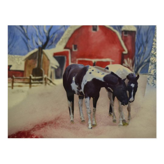 horse post card of fillies, Fargo and Sugar